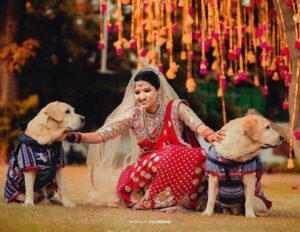 bride entry with Pet